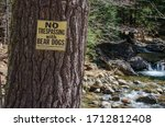 No Trespassing With Bear Dogs...