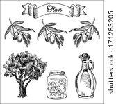 olives. set of vector sketches