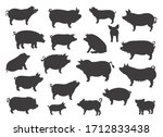 Pig Breeds Collection. Farm...