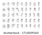 vector floral set  outline... | Shutterstock .eps vector #1713039265