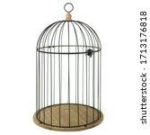 Black Metal Birdcage For...