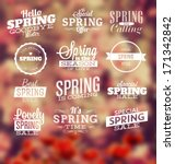 spring typographic design set | Shutterstock .eps vector #171342842
