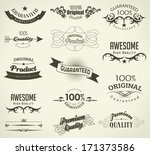 calligraphic design elements... | Shutterstock . vector #171373586