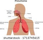 vector illustration of...   Shutterstock .eps vector #1713745615