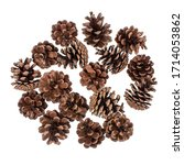 Set Of Pine Cones On A White...