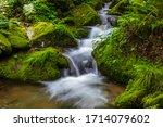 Fresh water strem of green mossy Sangdong Valley near Yeongwol-gun, Korea