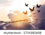 Freedom concept. silhouettes of ...