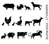 farm animals vector set.... | Shutterstock .eps vector #171464096