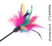 Stock photo multicolored feathered pole cat toy on a white background 171469406
