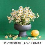 Stylish Porcelain Vase With...