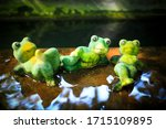 Green Tree Frogs Doll At Pond...