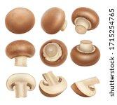 3d realistic champignon... | Shutterstock .eps vector #1715254765