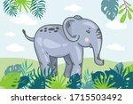 Zoo. African Fauna. Elephant I...