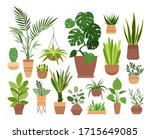 plant in pot vector... | Shutterstock .eps vector #1715649085
