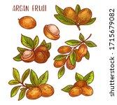 argan fruits sketch icons ... | Shutterstock .eps vector #1715679082