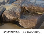 Wet Beach Rocks With Sand In A...