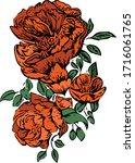 hand drwaing flower  floral... | Shutterstock .eps vector #1716061765