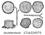 set of illustrations of wood... | Shutterstock .eps vector #1716224575