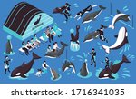 dolphinarium isometric set of... | Shutterstock .eps vector #1716341035