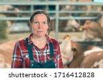 Female Farmer On Cow Dairy Far...