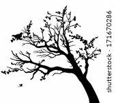 vector tree | Shutterstock .eps vector #171670286