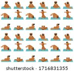yoga dogs poses and exercises...   Shutterstock .eps vector #1716831355