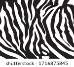 Black And White Zebra Stripes...
