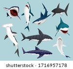 cartoon sharks. scary jaws and...   Shutterstock .eps vector #1716957178
