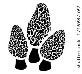 Morel Mushroom Patch In Black...