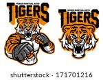 MMA fighter tiger - stock vector