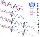 Polarization Of Light  Linear...