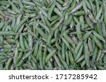 Pea Is Most Commonly The Small...