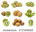 Kiwi Fruit Sliced Segments...