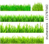 fresh green grass isolated on... | Shutterstock . vector #171787682