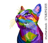 Colorful Cat Isolated On White...