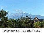Beautiful Kilimanjaro Mountain...