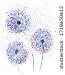 Abstract Watercolor Dandelion...