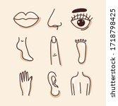 body parts  lips  nose  ear ... | Shutterstock .eps vector #1718798425