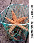 Orange Starfish Caught In A Net