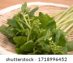 Japanese Wasabi Leaves And Buds....