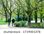 Ludwigsburg City  Germany  6...