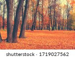 Beautiful Autumn Calm Nature...