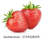 Ripe Fresh Strawberry Clipping...