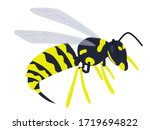 Vector Illustration  Wasp With...