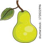 green pear | Shutterstock .eps vector #172022996