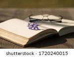 Open Book With Violet Flowers