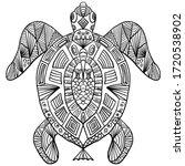 Big Turtle With Patterns Black...