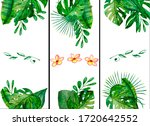 watercolor composition with...   Shutterstock . vector #1720642552