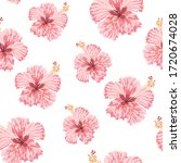 Pink Hibiscus Flowers On The...
