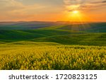 Rural Landscape With Colorful...